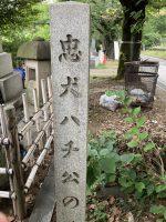 青山墓地にて